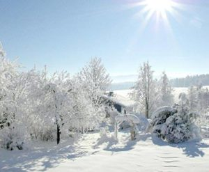 Christmas and New Year in Royal Deeside! We still have some availability so why